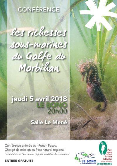 Conférence : Les richesses sous – marines du Golfe du Morbihan