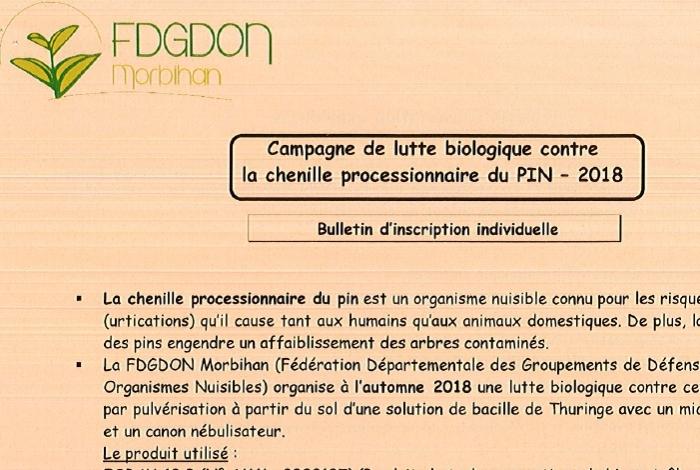 Campagne de lutte biologique contre la chenille processionnaire du pin