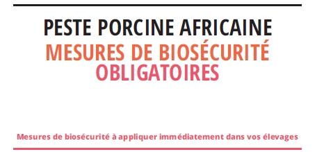 Peste Porcine Africaine – rappel des mesures de biosécurité