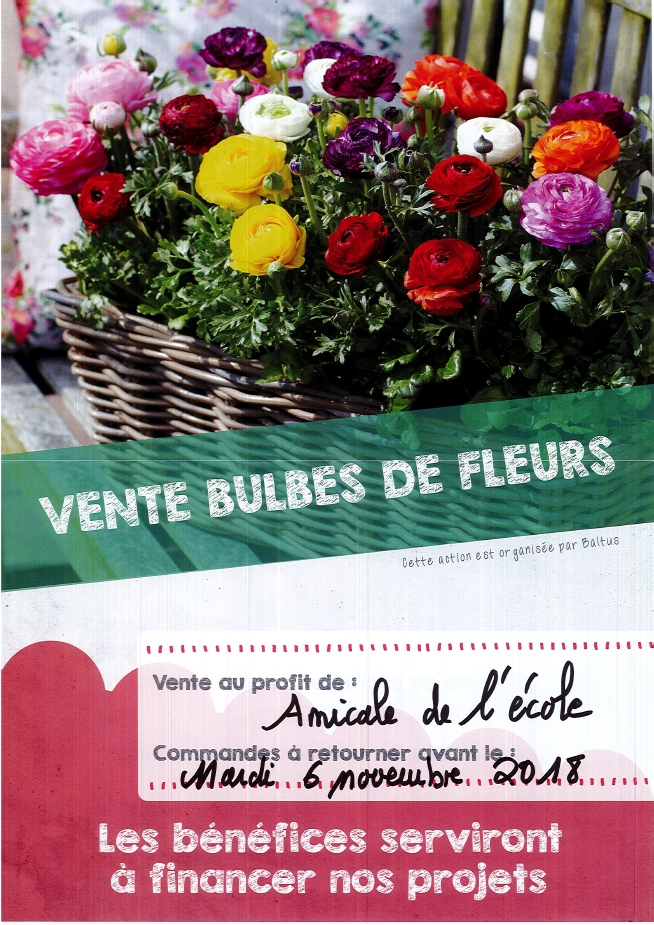 Amicale de l'école – Vente de bulbes de fleurs
